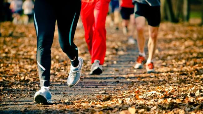 10 и 11 октября студенты колледжей ЗАО приму участие в легкоатлетическом кроссе