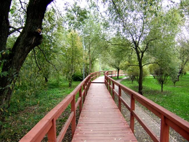 До конца ноября в ЗАО обновят природный парк