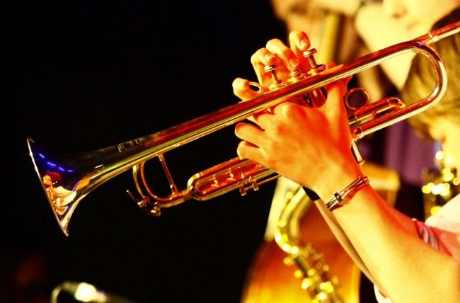 16 ноября Музей Победы приглашает на благотворительный джазовый фестиваль
