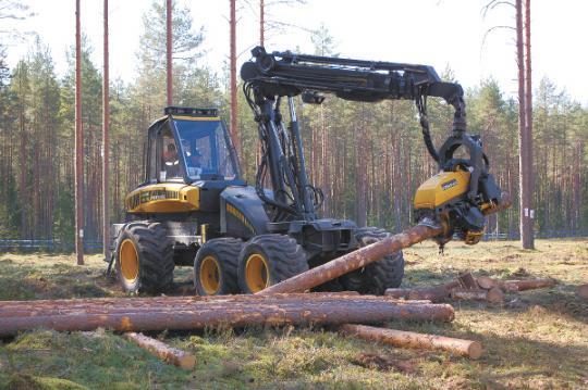 Лес выводят