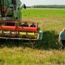Как хранить зерно?