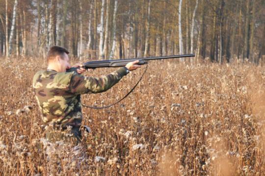 К охотникам стали строже