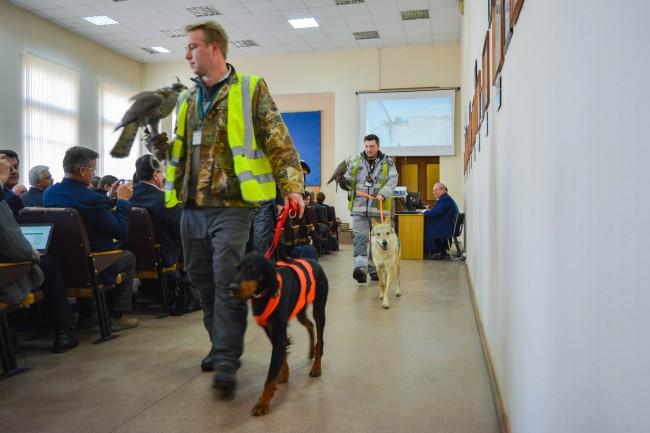 В аэропорту Внуково прошел семинар по безопасности полетов
