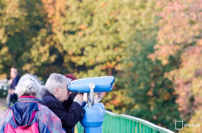 Бесплатные смотровые бинокли появились на Воробьёвых горах