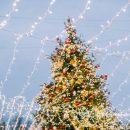 «Путешествие в Рождество»: москвичи помогли определить программу фестиваля