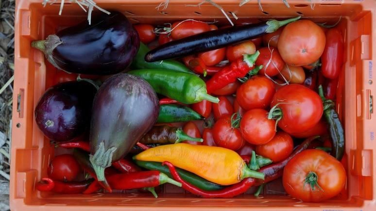 Вести: украинцы подсели на вегетарианскую диету