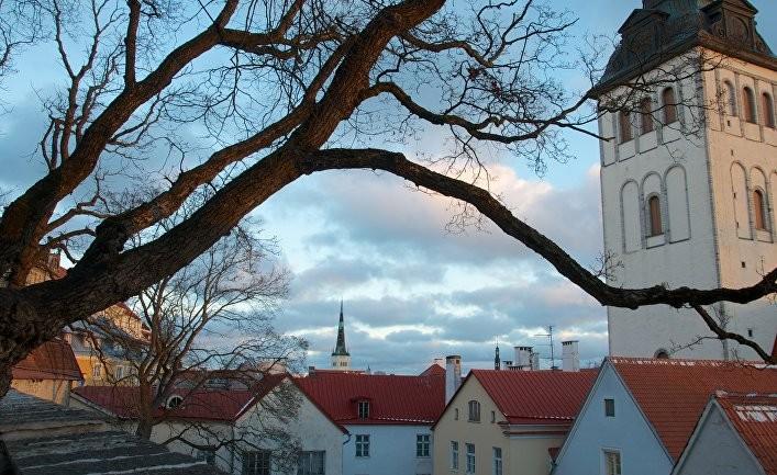 Эстония — пример здорового национализма