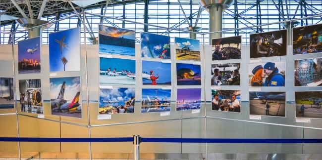 Во Внуково открылась фотовыставка «Предчувствие полёта»