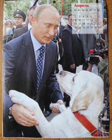 Sun: новый календарь с Путиным растопит даже самые холодные сердца